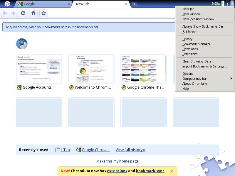 Google Chrome na linuksie 2009